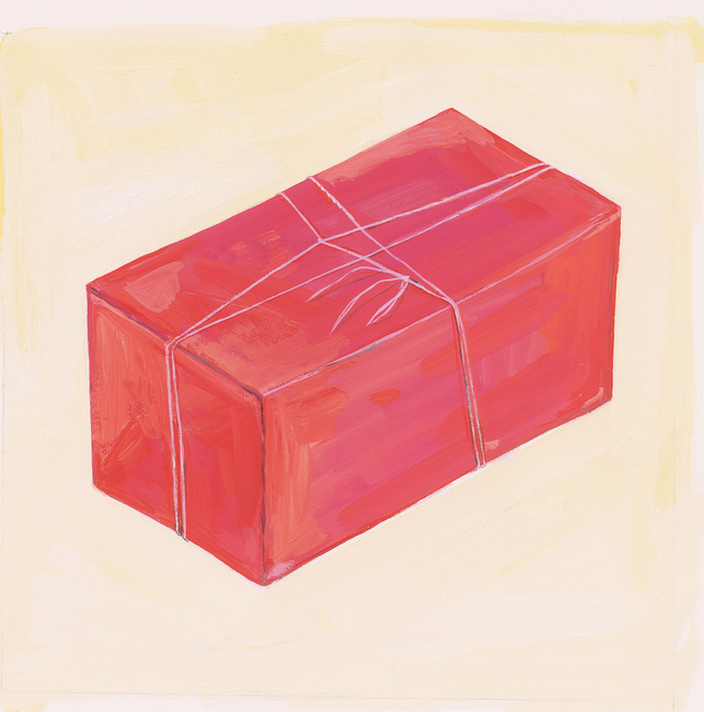 Maira-kalman-Pink-Package
